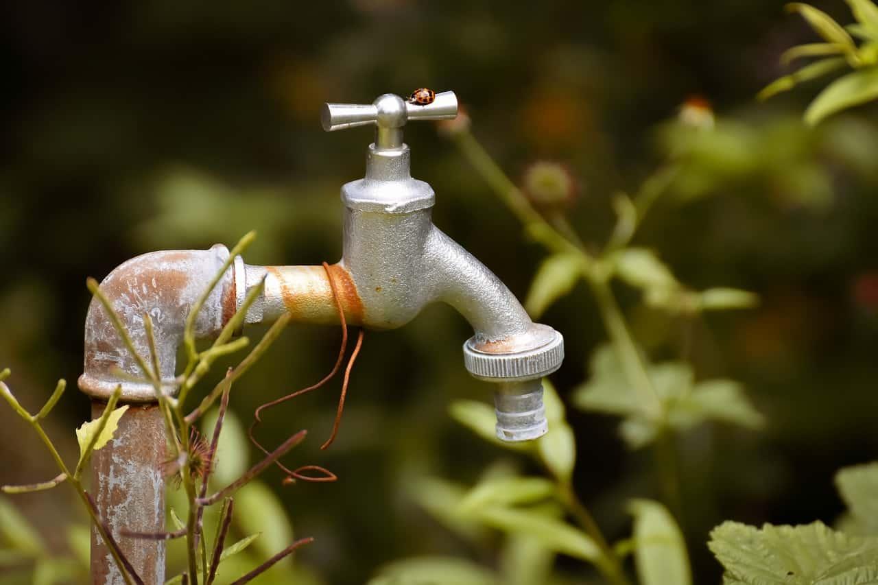Faucet Old Rusty Ladybug  - Alexas_Fotos / Pixabay